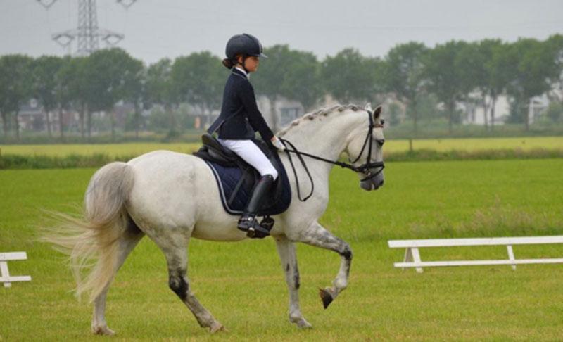 Amber en Onyx 4e plaats in Rosmalen