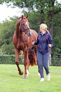 Jonna Schelstraete - paardentrainer