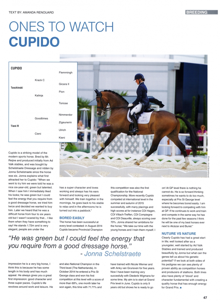 Horse-international-2-Article-Cupido