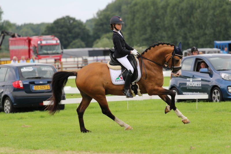 Micky 2x kampioen op Brabantse Kampioenschappen