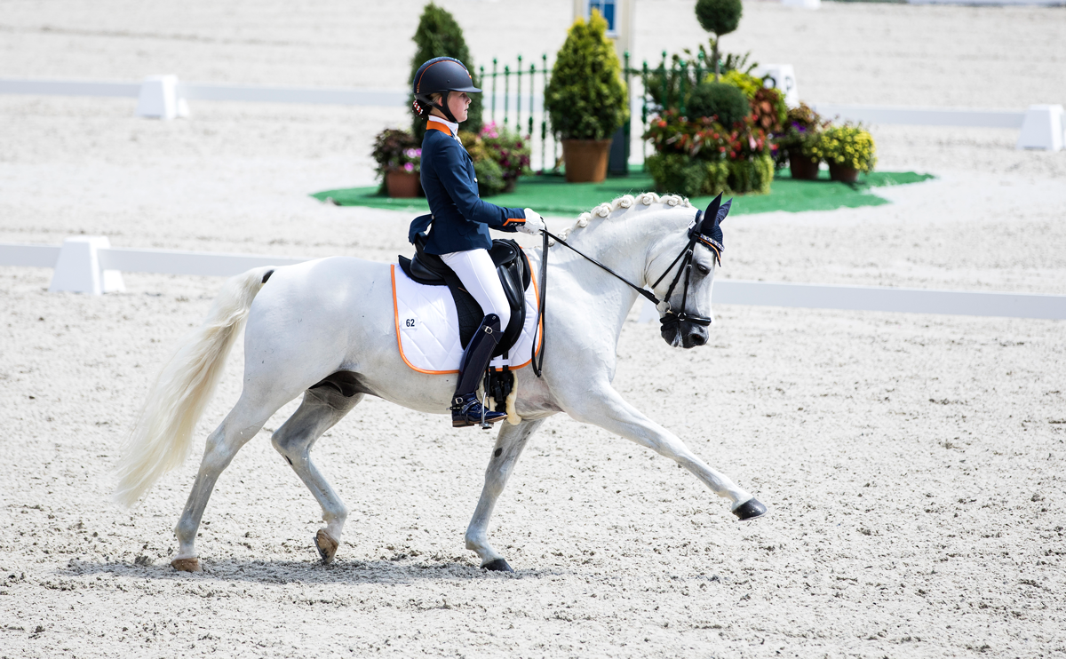 Great scores for Micky and Sco during CDI Saumur