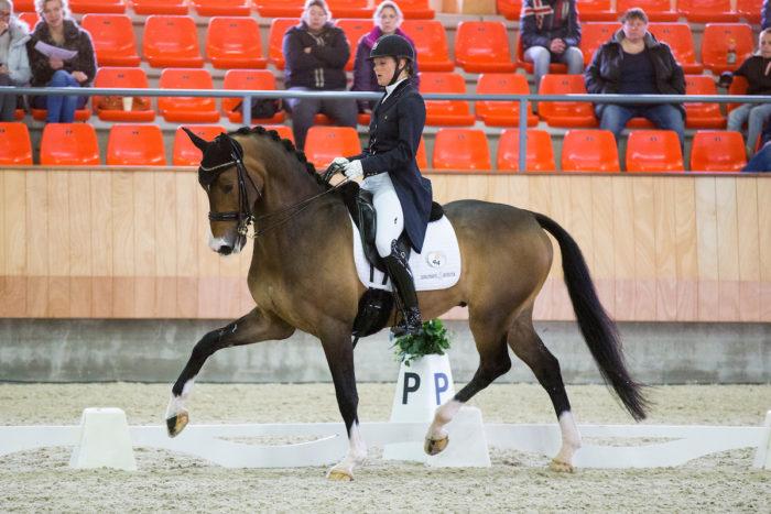 Jonna Schelstraete van den Ham - Cupido KNHS Indoorkampioenschappen 2015 © DigiShots