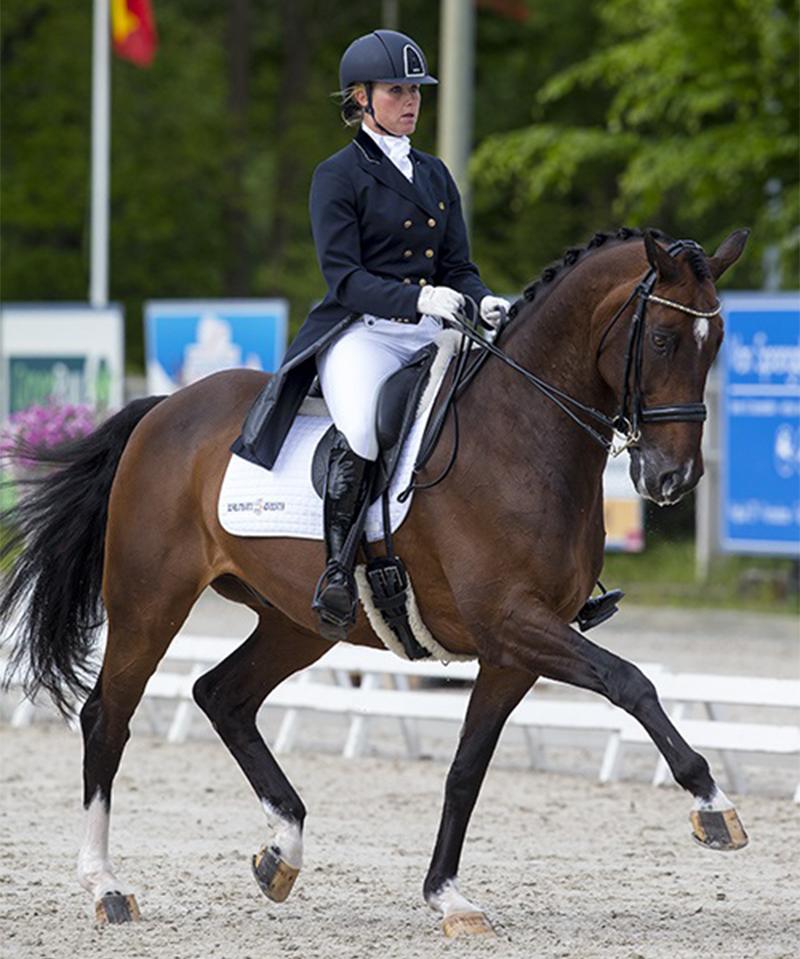 Carl Hester's EK-paard Liebling II overleden