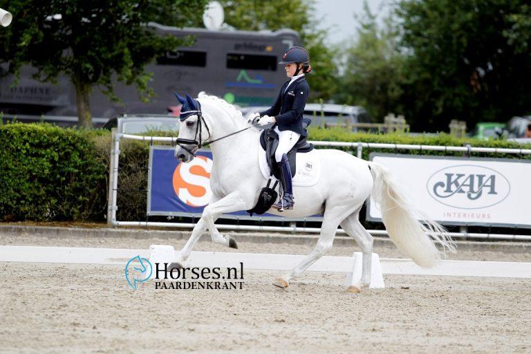 Elins-Noncisdador-Micky-Schelstraete-768x512